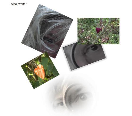 Bild-collage 23.12.14